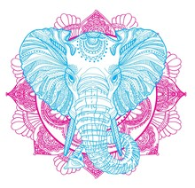 The Head Of An Elephant. Meditation, Coloring Of The Mandala. Large Horns And Long Trunk. Elephants With Tusks. Drawing Manually, Templates. Strips, Points, Arrows. Spots Of Watercolor Paint, Spray.