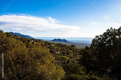 Fotografia, Obraz  Dawn light at Organ Mountains-Desert Peaks National Monument in New Mexico