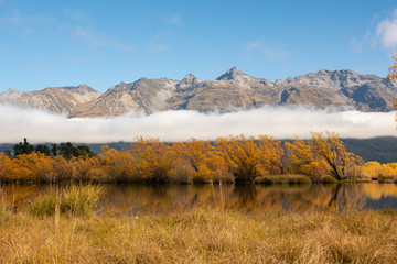 Autumn colours at Lake Wakatipu in Glenorchy, New Zealand