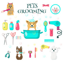 Pets Grooming Set, Vector Flat Isolated Illustration