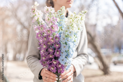 Tablou Canvas Bunch of fresh delphinium