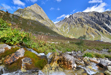 View On Alpine Mountain In Summer From Water Flowing Among Rocks
