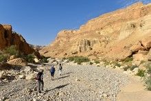 Scenic Hike In Riverbed Of Wad...