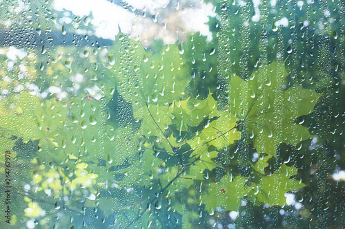 Montage in der Fensternische Olivgrun spring day in the park / view of the spring landscape in the park through the window, raindrops on the glass