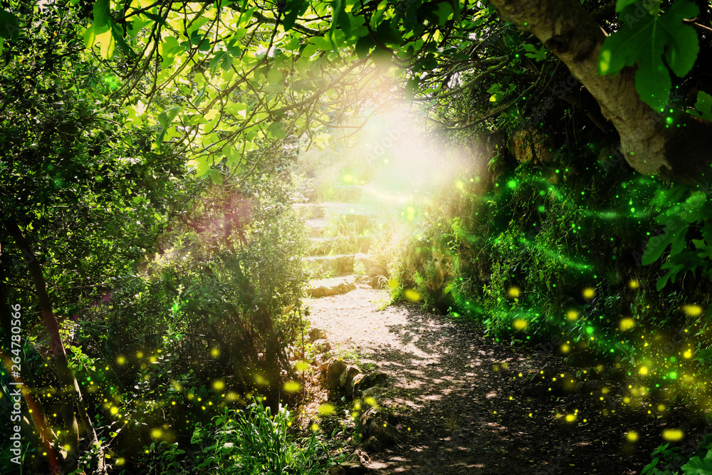 Fototapeta Road and stone stairs in magical and mysterious dark forest with mystical sun light and firefly. Fairy tale concept