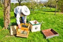 Horizontal Photo Of A Beekeepe...