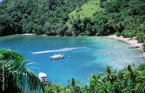 Foto auf Leinwand Olivgrun karibische badestrände