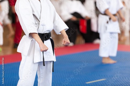 Karate practitioner body position during competition. Martial arts.