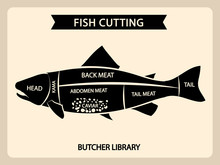 Fish Meat Cutting Vector Vintage Chart, Cuts Guide Diagram. Illustration Of Chart Cut Fish, Tail And Head, Back And Abdomen
