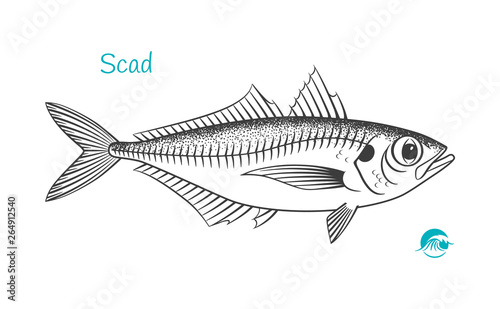 Scad hand-drawn illustration Slika na platnu