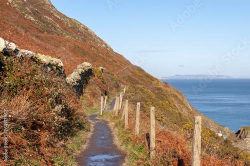 Fotomural Cliff Walk Bray Greystones