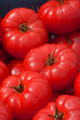 canvas print picture - ripe and sweet tomatoes on outdoor market, big red beef tomatoes on a market in bavaria