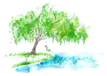 Deciduous Tree And Girl On Swing . Spring Rural Landscape. Watercolor Hand Drawn Illustration.