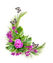 Catharanthus Flowers And Bougainvillea With Palm Leaves And Butterflies In A Corner Tropical Arrangement