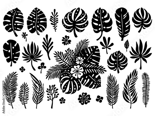 Set Of Black Silhouettes Exotic Tropical Leaves On A White Background Vector Botanical Illustration Great Design Elements For Laser Cutting Paper Cut Template Stickers And Others Buy This Stock Vector And 40x black pngs (transparent background). silhouettes exotic tropical leaves
