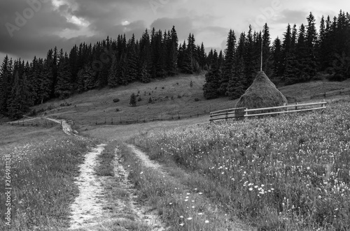 Summer mountain landscape Fototapet