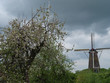 Die kleine Stadt Bredevoort in den Niederlanden