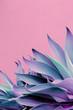 Leinwanddruck Bild - Fashion plants on pink design. Aloe. Canary Island Nature