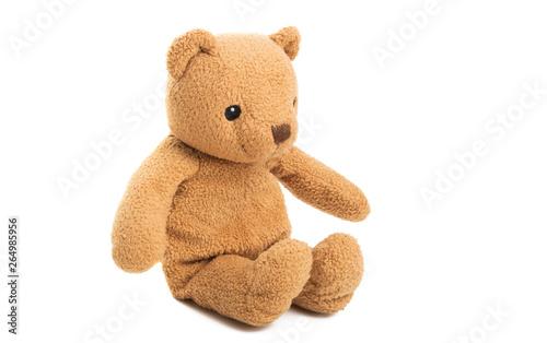 Photo soft bear isolated