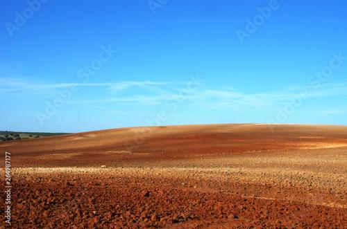 Photo  Plowed field in the Alentejo plain of Portugal