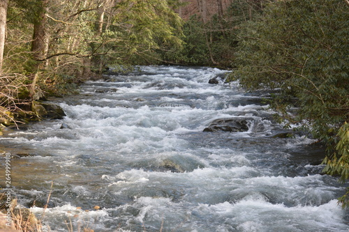 Fototapeten Forest river Wild Waters Running
