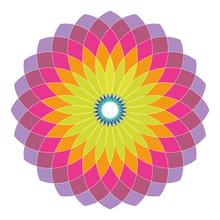 Transparent Mosaic Spirograph Pattern In Purple, Pink, Orange,yellow, Green And Blue