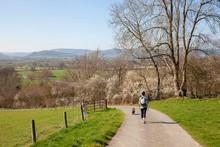 Walker In Shropshire Landscape...