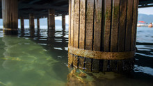 Macro Image Of Old Wooden Colu...