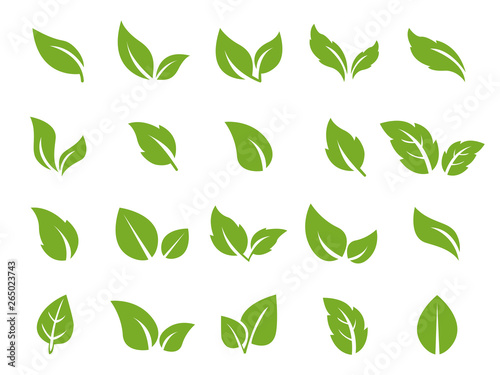 Fototapety, obrazy: leafs pack green set icons