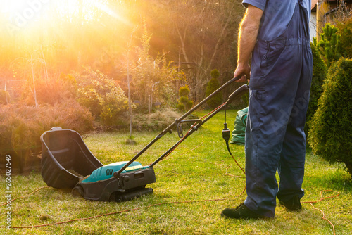 Using scarifier in the garden Slika na platnu