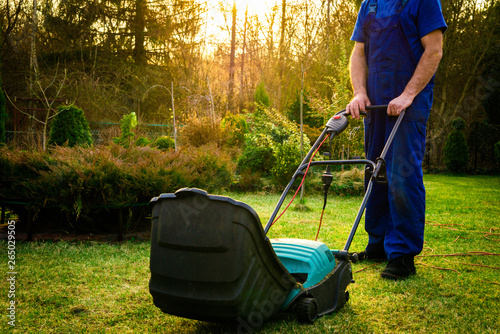 Using scarifier in the garden Canvas Print