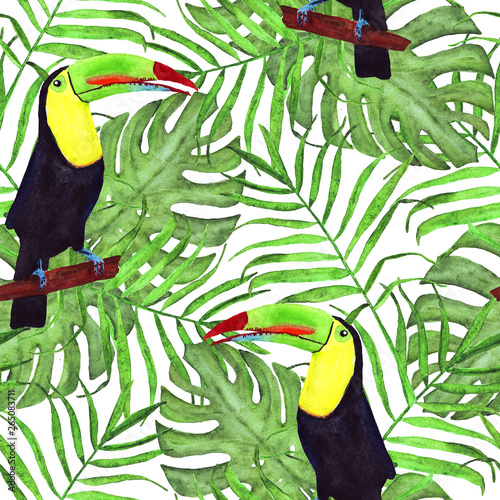 Foto auf AluDibond Ziehen Seamless watercolor illustration of toucan bird.Tropical leaves, dense jungle. Pattern with tropic summertime motif. palm leaves. monstera leaves