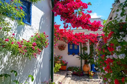 Photo Festival of the Courtyards, Cordoba, Spain
