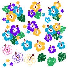 Pretty Hibiscus Flower Pattern Illustration