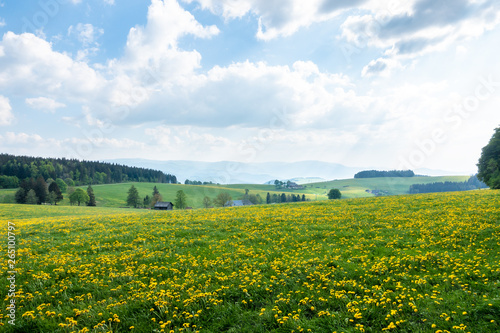 beautiful view landscape south Germany