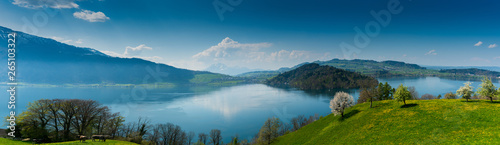 Deurstickers Kersenbloesem beautiful panorama lakeside landscape in Switzerland with green fields and blossoming flowers and trees and mountains behind