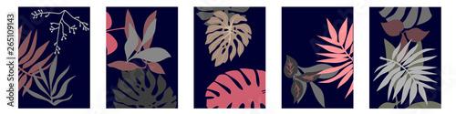 Fototapeta Set of A4 cards with botanical motifs. obraz