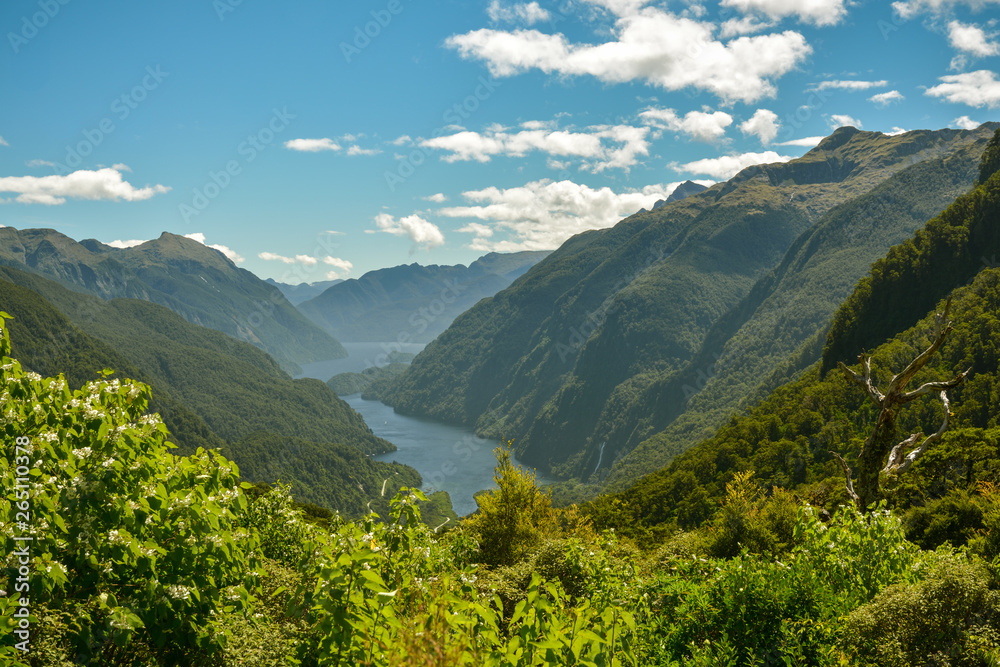 Fototapety, obrazy: View on Doubltful Sound fiord far from civilization in southern part of New Zealand
