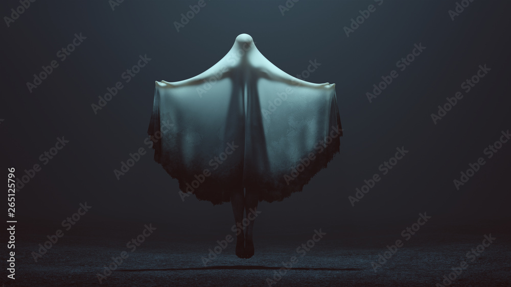 Fototapeta Floating Evil Spirit Ghost with Arms Out and Glowing Eyes in a Death Shroud in a Foggy Void Back View 3d Illustration 3d Rendering