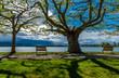Ferien im Frühling am schönen Bodensee mit blauen Himmel und toller Wolken Stimmung