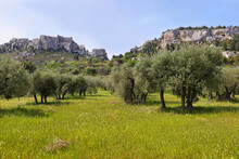 Provencal Village Les Baux De Provence