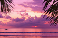 Purple Sunset On The Beach. View Of The Shore Through Palm Leaves.