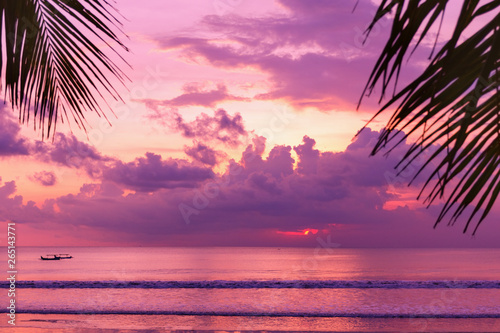 Fotobehang Zee zonsondergang Purple sunset on the beach. View of the shore through palm leaves.