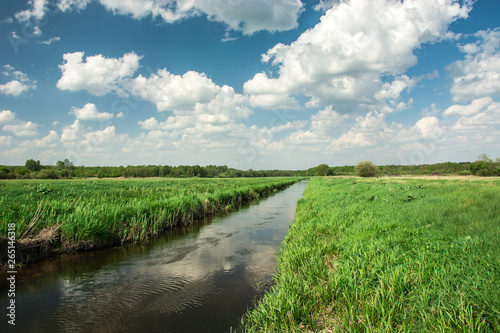 Eastern Poland and the river flowing through green meadow, forest to the horizon and white clouds on sky
