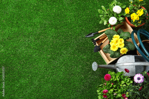 Flat lay composition with gardening equipment and flowers on green grass, space Fototapet