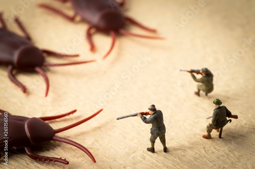 Cuadros en Lienzo ゴキブリ退治 害虫駆除のイメージ