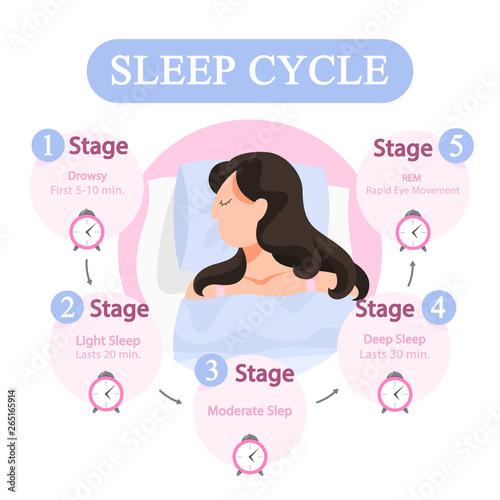 Sleep cycle infographics. Stage of sleep during Wallpaper Mural