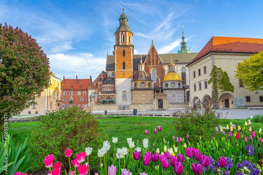 Fototapety, obrazy: Kwitnące tulipany na dzieńcu Wawela, Kraków