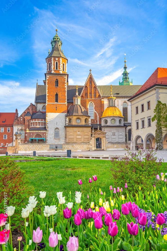 Fototapety, obrazy: Wiosna na Wawelu, Kraków