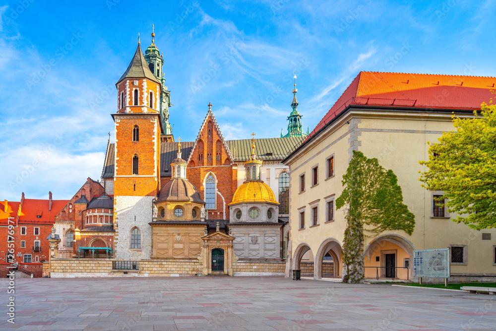 Fototapety, obrazy: Wawel o świcie, Kraków
